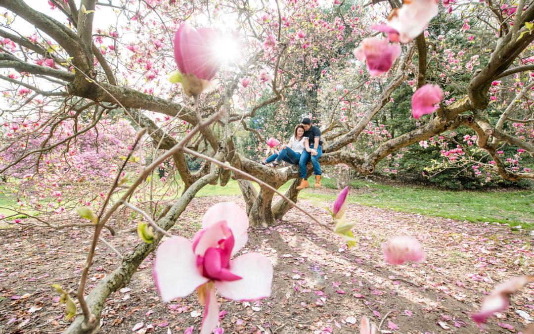 Longwood Garden Engagement Session – Heana & John